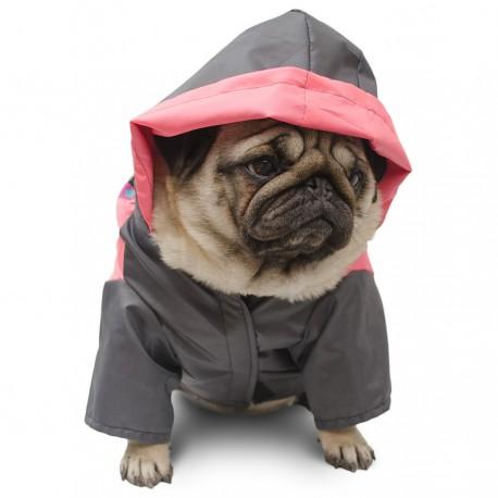 Piloto impermeable para perros paseo bajo la lluvia