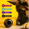 Zambo juguete para perros