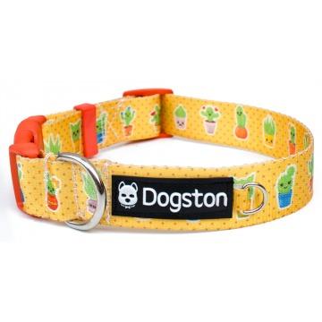 Collar Cactus kawaii para perros
