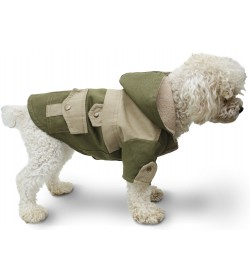 Campera gabardina verde militar ropa para perros caniche indumentaria canina Dogston